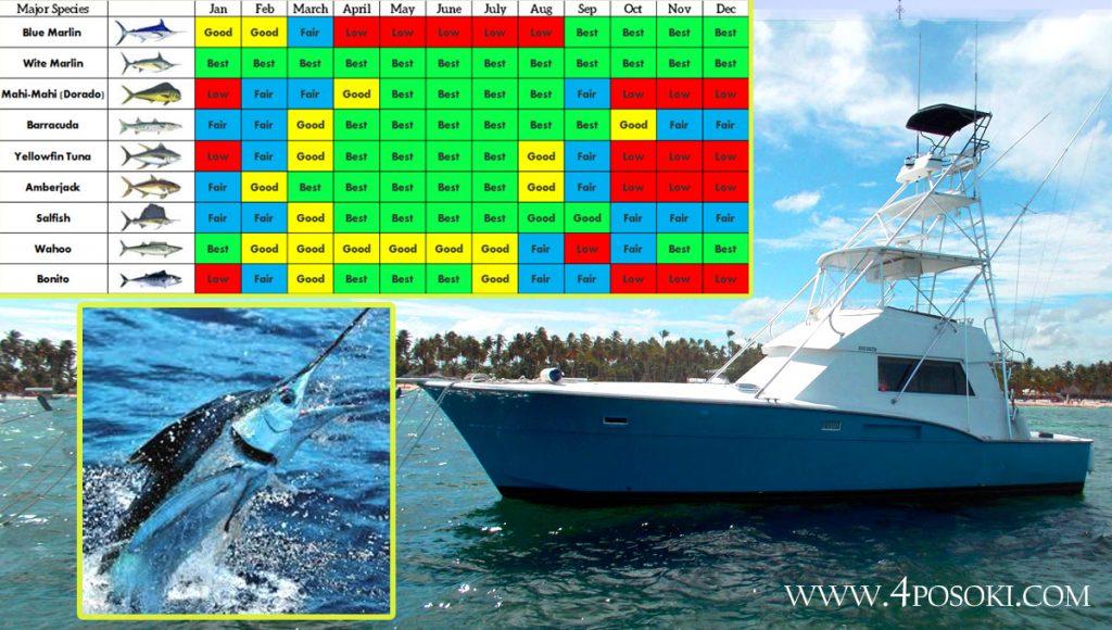океански риболов Доминикана